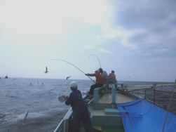 佐島の漁師がやってくる6