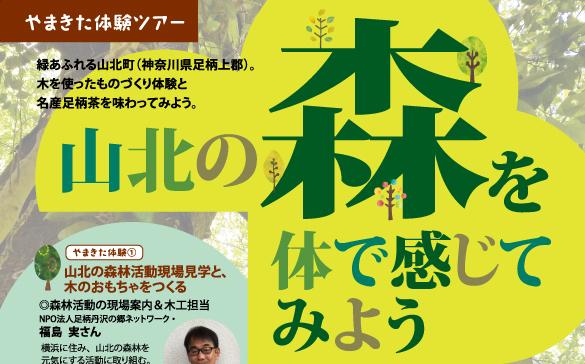 cover_yamakita